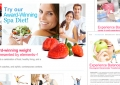 BalanceDiet Main Website - Design and layout